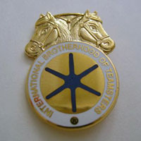 Teamsters Lapel Pins