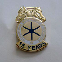 Teamsters Muli-Year Member Lapel Pins